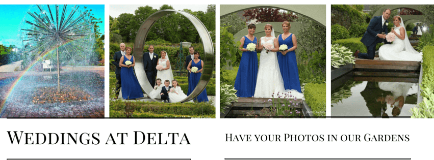 Weddings at Delta